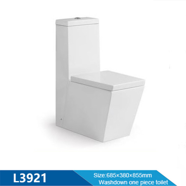 Two piece toilet p-trap dual flushing back to wall toilet rimless ceramic for hotel