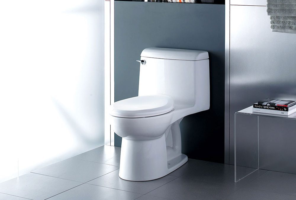 the specific working principle of the toilet