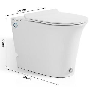 Sanitärkeramik einteilige Toilette am Boden montierte Absaugtoilette für Badezimmer