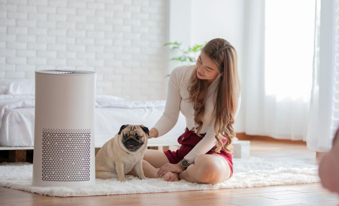 Precautions for using air purifier