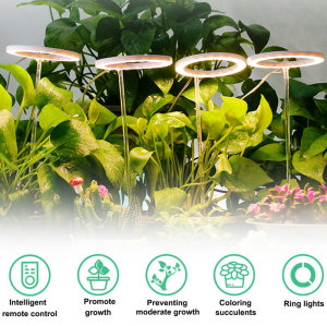 Plant growth lights manufacturer,Multifunctional,neoteric,technological & intelligent plant growth lights bring you into the age of intelligence.
