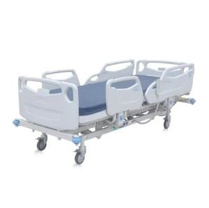Five Function Electrical Hospital Bed