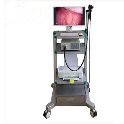 Veterinary Flexible Gastroscope Vet Video Endoscope