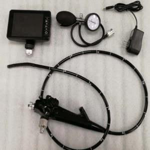 Veterinary Flexible Video Gastroscope for Pet Hospital
