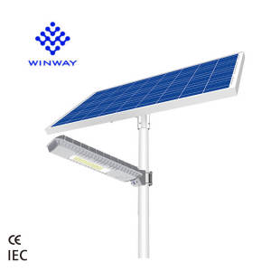 Best quality Outdoor Road Pole Lamp Blue Fire solar street light