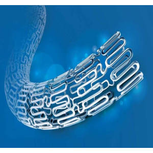 BuMA® Biodegradable-Drug-Coating Coronary Stent System