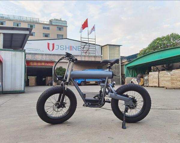 500W  20'' Foldaway Li-ion Battery Electric City Bicycle