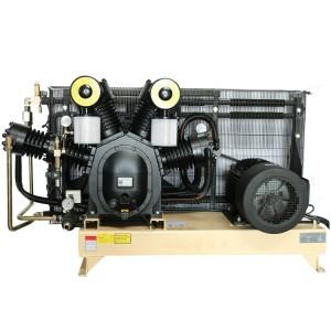 40bar Middle Pressure Compresor De Aire Air Cooling Pet Compressor