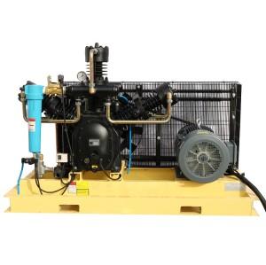 Air Cooling Piston Air Compressor 30 Bar Compresseur D′air