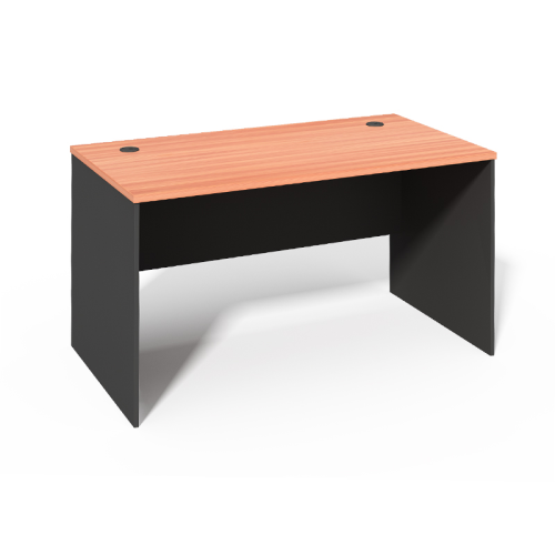 WS -1060 Matching Color Simple Office Desk