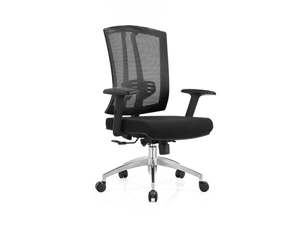 WS-CP181M Medium Back Office Chair