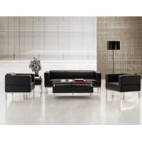 WS-83605 Metal Structure Leather Sofa