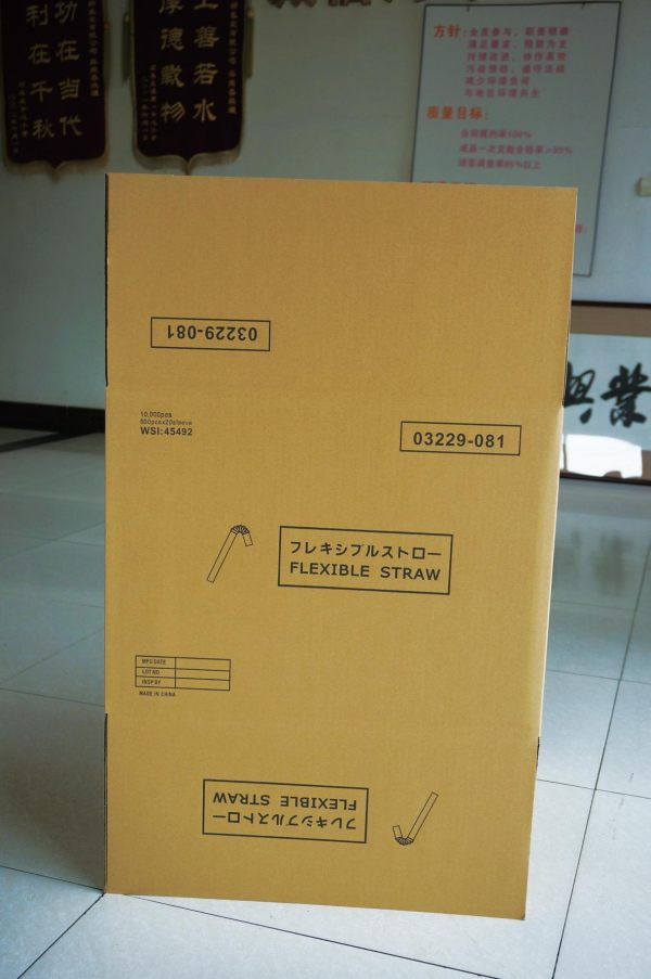 Custom Printing Vertical Corrugated Packaging Box For Sale