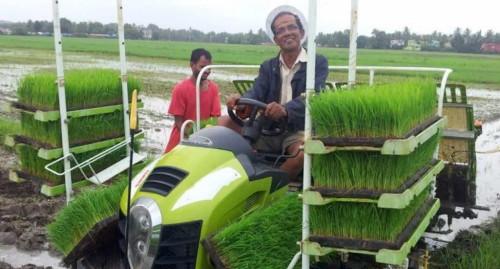LANDTOP 4 row manual rice transplanter price